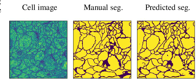 Figure 3 for The Role of Regularization in Shaping Weight and Node Pruning Dependency and Dynamics