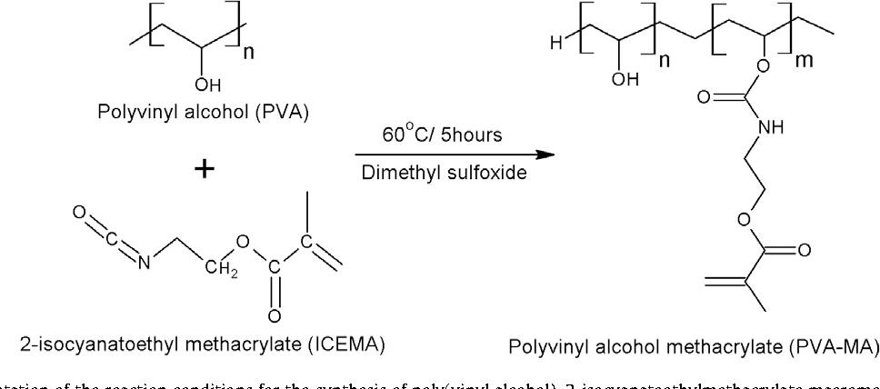Figure 1 from Silk fibroin/poly(vinyl alcohol) photocrosslinked ...
