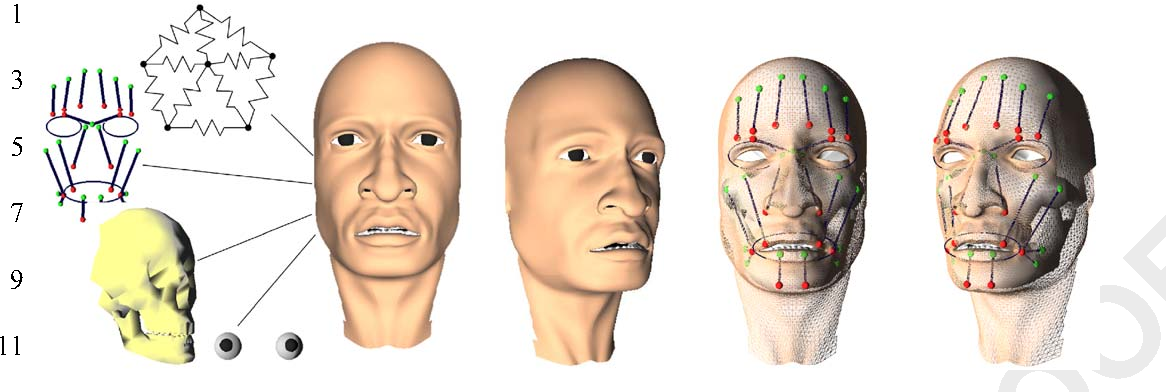 Geometry based muscle modeling for facial animation