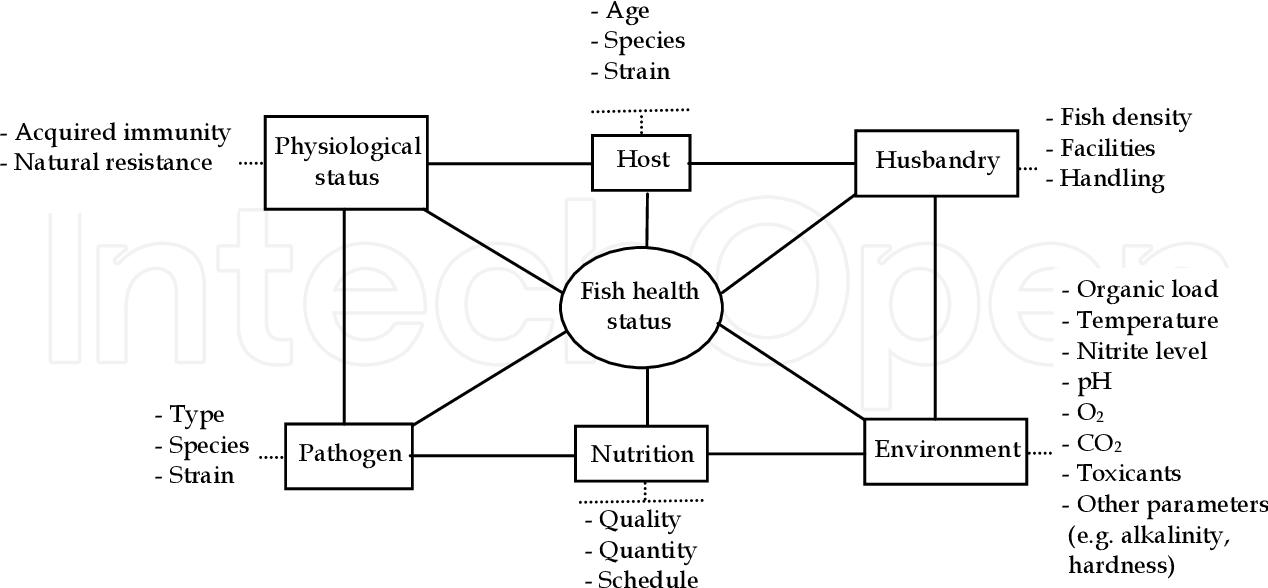 the relationship of various factors in fish health status