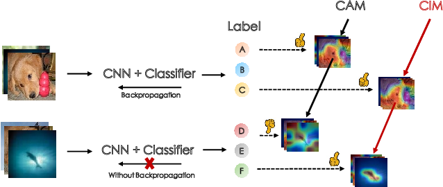 Figure 1 for CIM: Class-Irrelevant Mapping for Few-Shot Classification