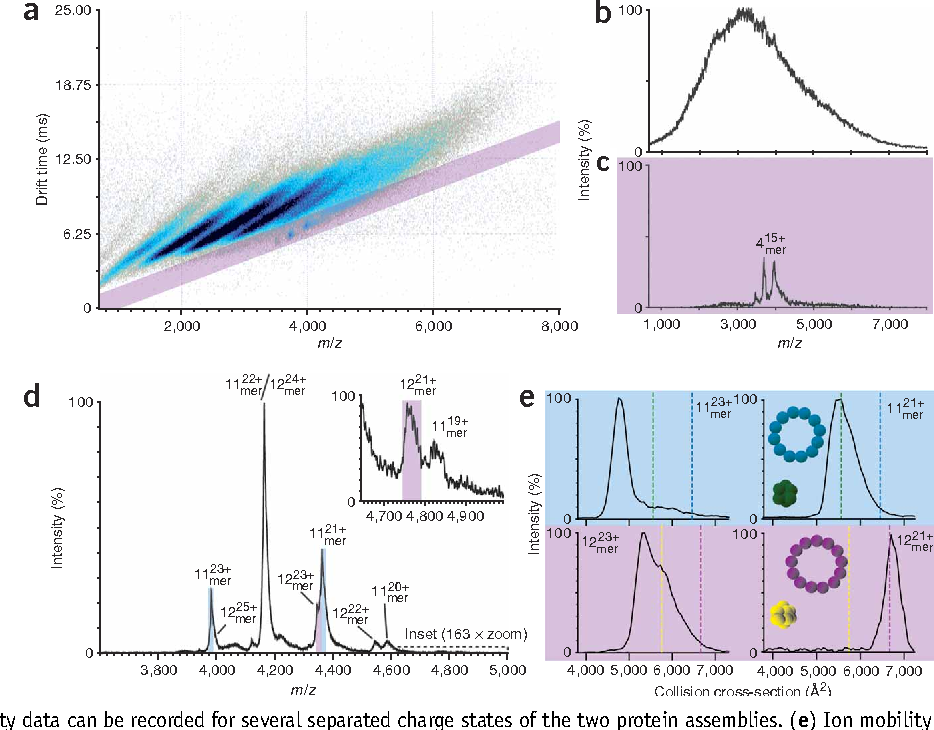Figure 6 from Ion mobility–mass spectrometry analysis of