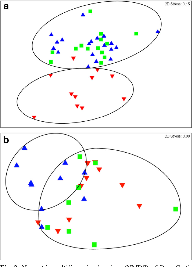Figure 2 from Characterization of Chasmoendolithic Community