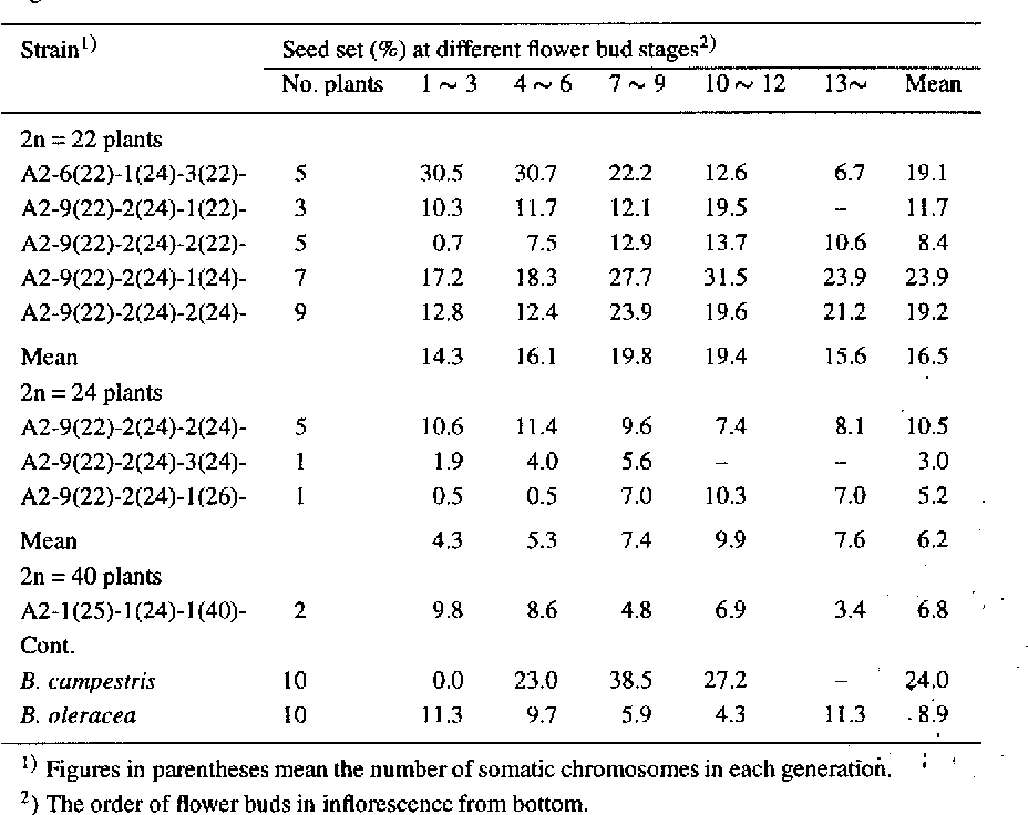Table 4 . Degree of self-incompatibilities of 2n = 22, 24 and 40 plants in S3 generation as compared with B. campestris (A-2) and B. oleracea based on the seed set percentage at different flower bud stages