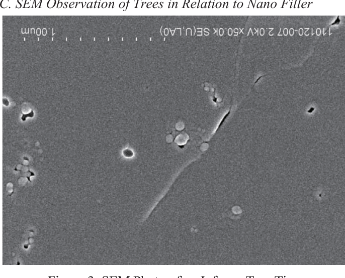 Figure 3 from Generation time and morphology of infancy trees in