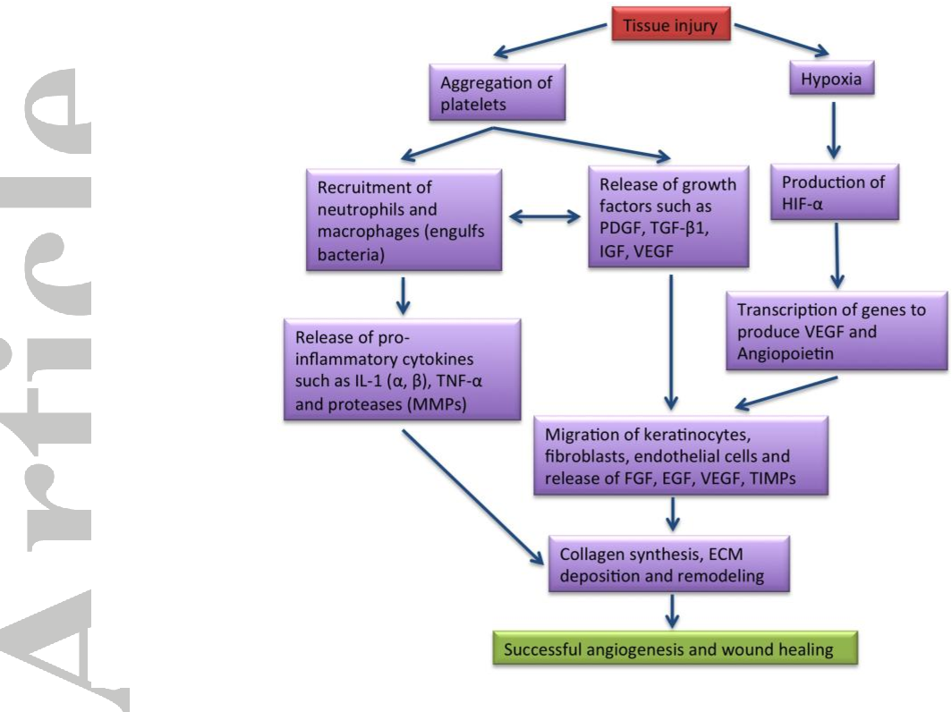 Figure 1 from Innovations in gene and growth factor delivery systems