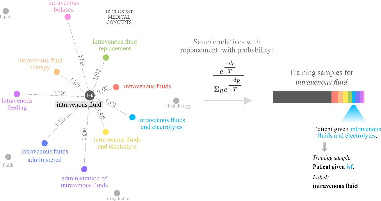 Figure 3 for Training without training data: Improving the generalizability of automated medical abbreviation disambiguation