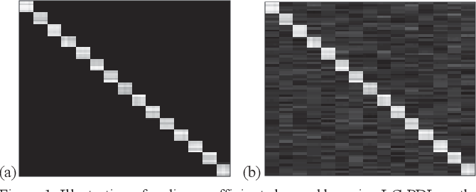 Figure 1 for Scalable Block-Diagonal Locality-Constrained Projective Dictionary Learning