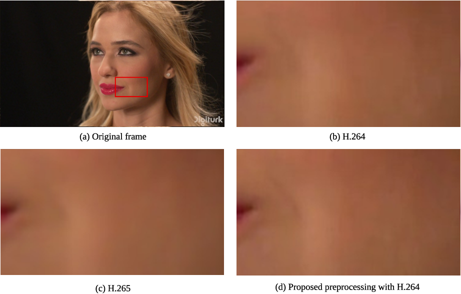 Figure 1 for Object Detection-Based Variable Quantization Processing