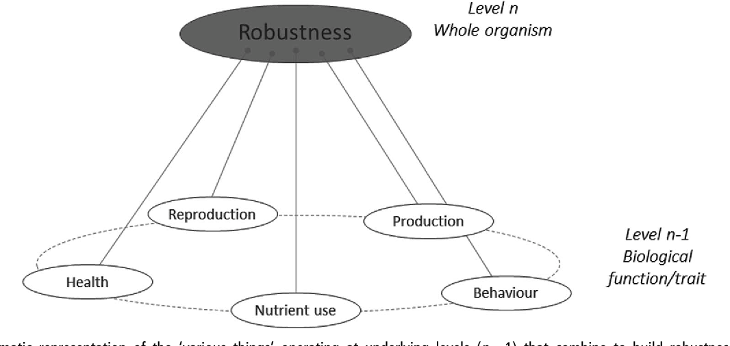 Review Deciphering Animal Robustness A Synthesis To Facilitate Its