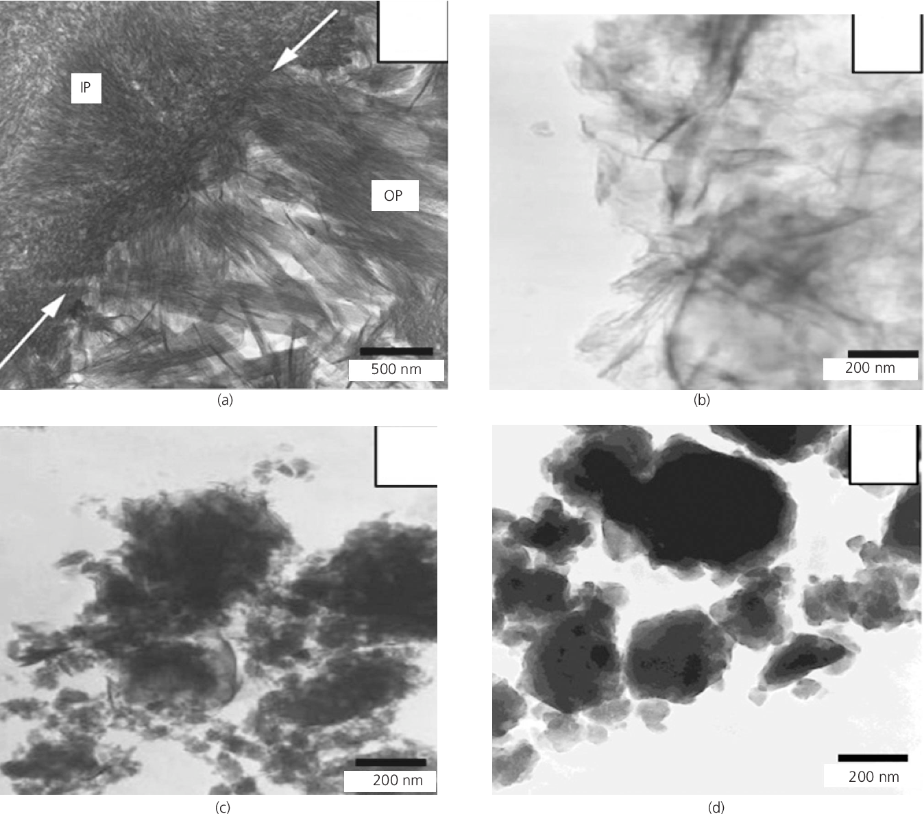 Figure 3 From Morphology Of Calcium Silicate Hydrate (C-S