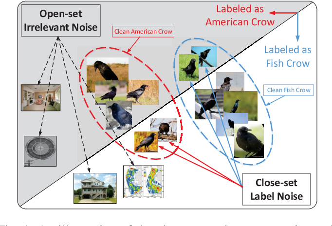 Figure 1 for Exploiting Web Images for Fine-Grained Visual Recognition by Eliminating Noisy Samples and Utilizing Hard Ones