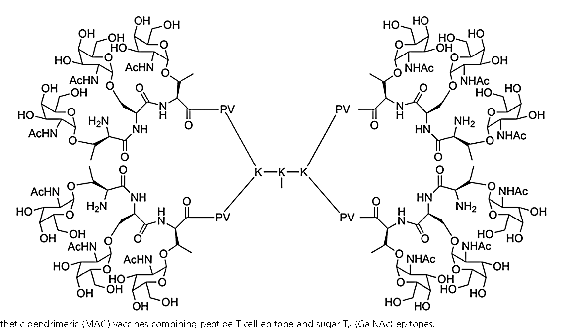 Figure 5 From Clustered Carbohydrates In Synthetic Vaccines