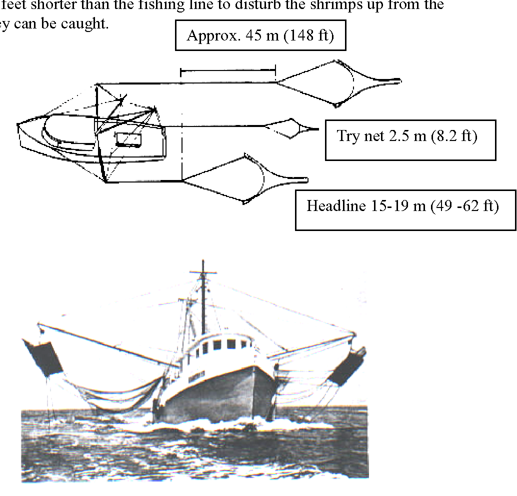 Figure 2 from SHRIMP TRAWL DESIGN IMPROVEMENTS SUGGESTED FOR MEXICAN
