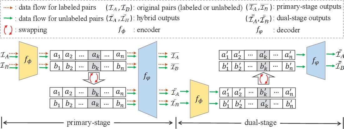 Figure 1 for Dual Swap Disentangling