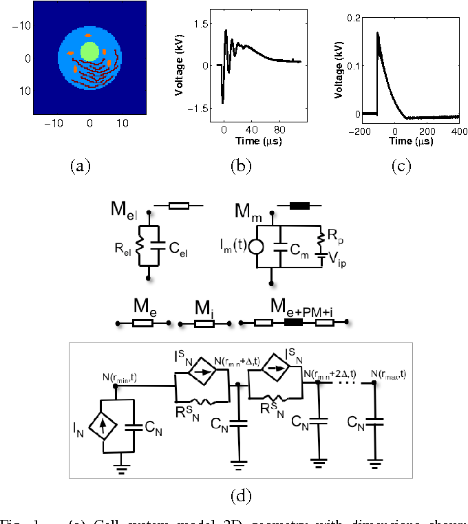 Figure 1 from In silico estimates of cell electroporation by ... on