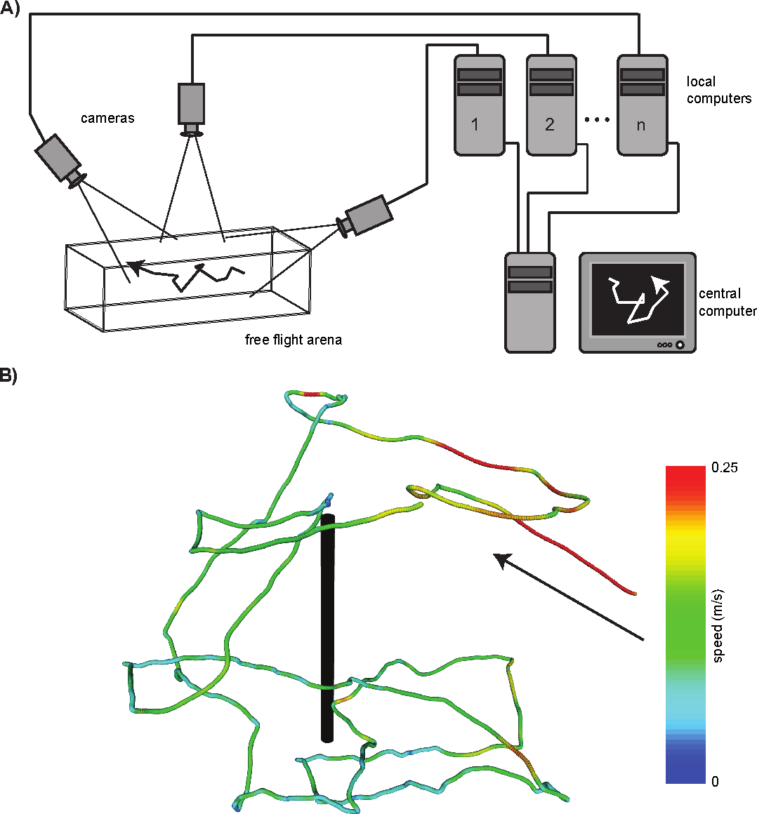 Figure 1 for Multi-camera Realtime 3D Tracking of Multiple Flying Animals