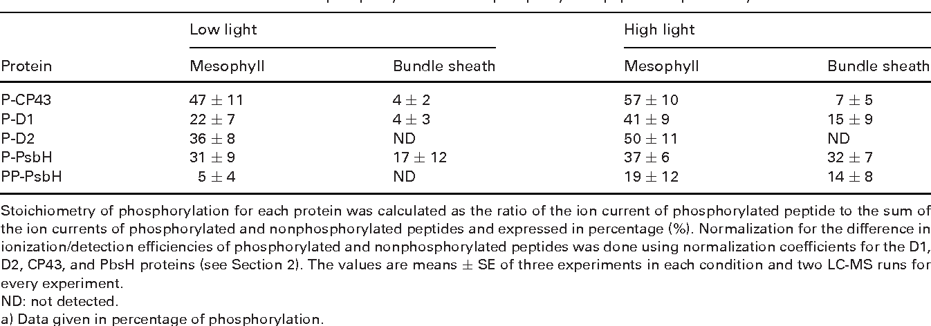 Table 2. Stoichiometry of phosphorylation for each of the PSII core proteins from maize plants grown under either low light or high light, as determined from the ion currents of phosphorylated and nonphosphorylated peptides separated by LC-MSa