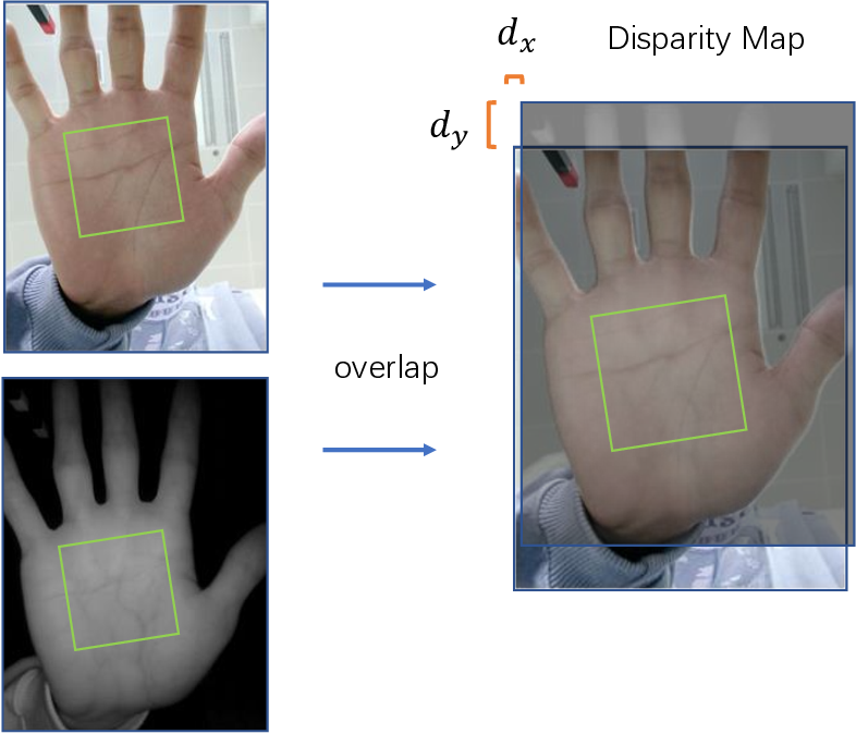 Figure 3 for BPFNet: A Unified Framework for Bimodal Palmprint Alignment and Fusion