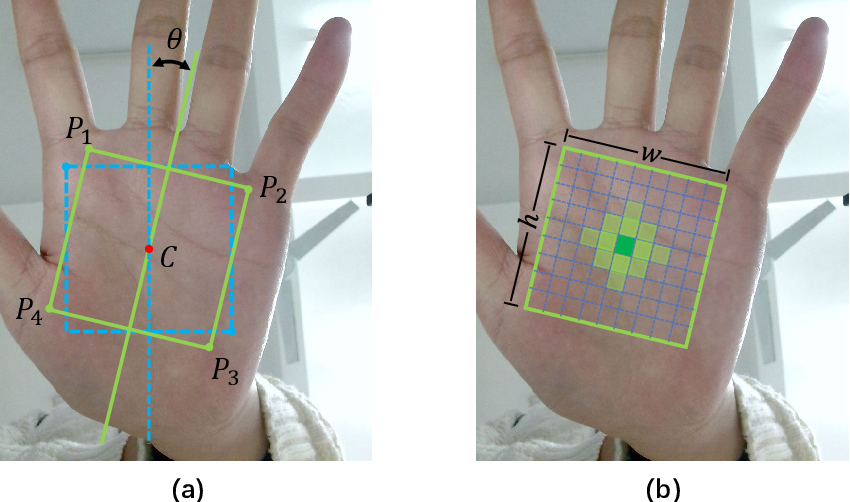 Figure 2 for BPFNet: A Unified Framework for Bimodal Palmprint Alignment and Fusion