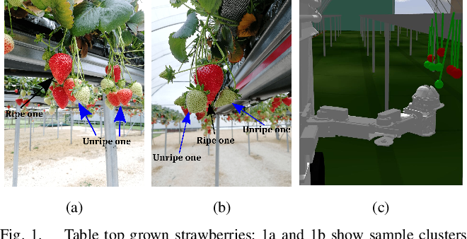 Figure 1 for Planning Actions by Interactive Movement Primitives: pushing occluding pieces to pick a ripe fruit