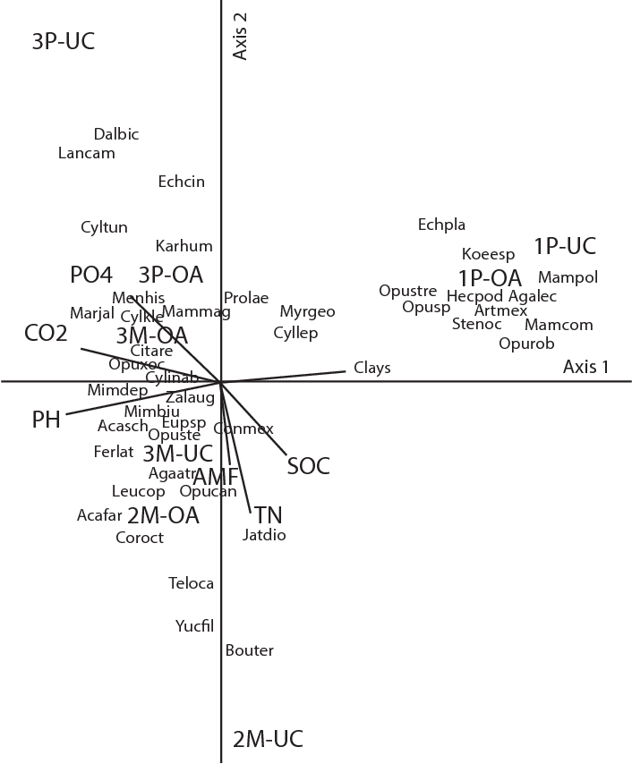Figure 6 From Prosopis Laevigata And Mimosa Biuncifera Leguminosae