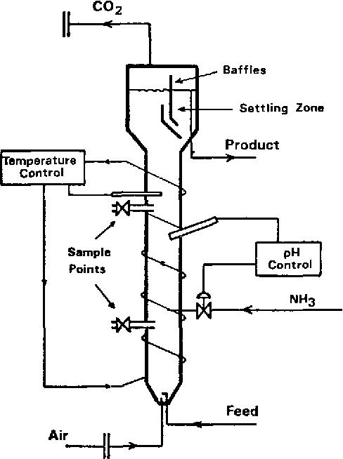 Figure 1 Schematic Arrangement of Experimental Tower Fermenter