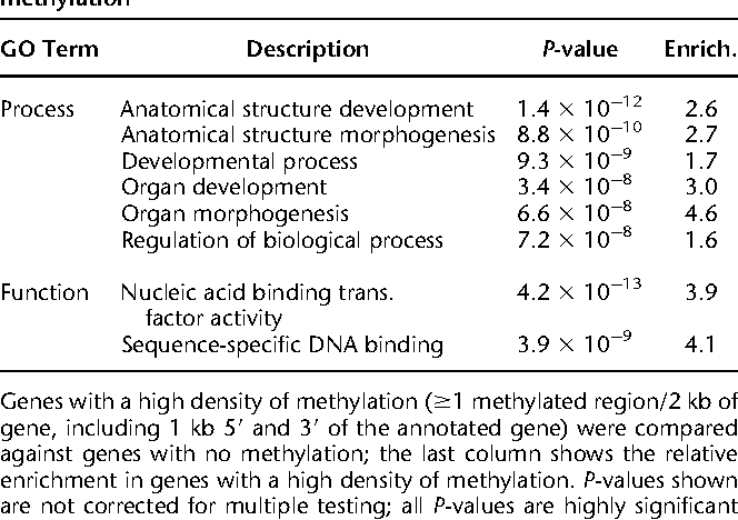 Table 3. GO terms associated with genes having a high density of methylation