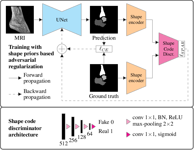 Figure 1 for Multi-Structure Deep Segmentation with Shape Priors and Latent Adversarial Regularization
