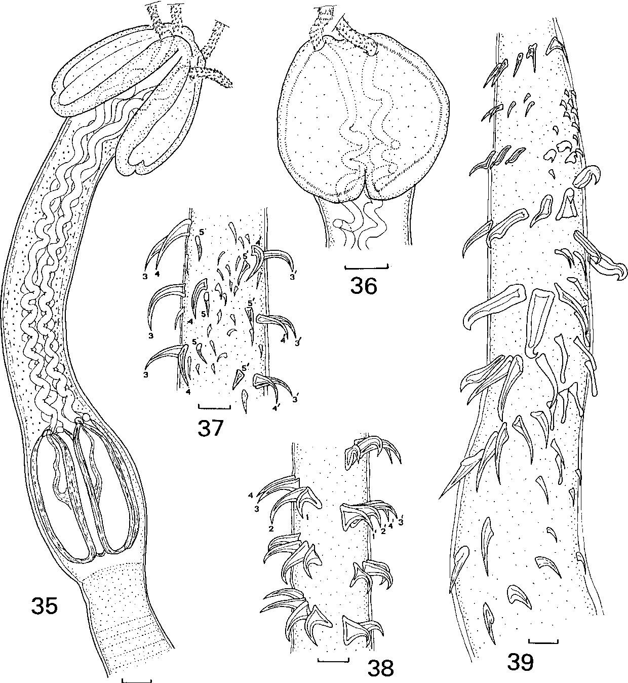 figure 35–39