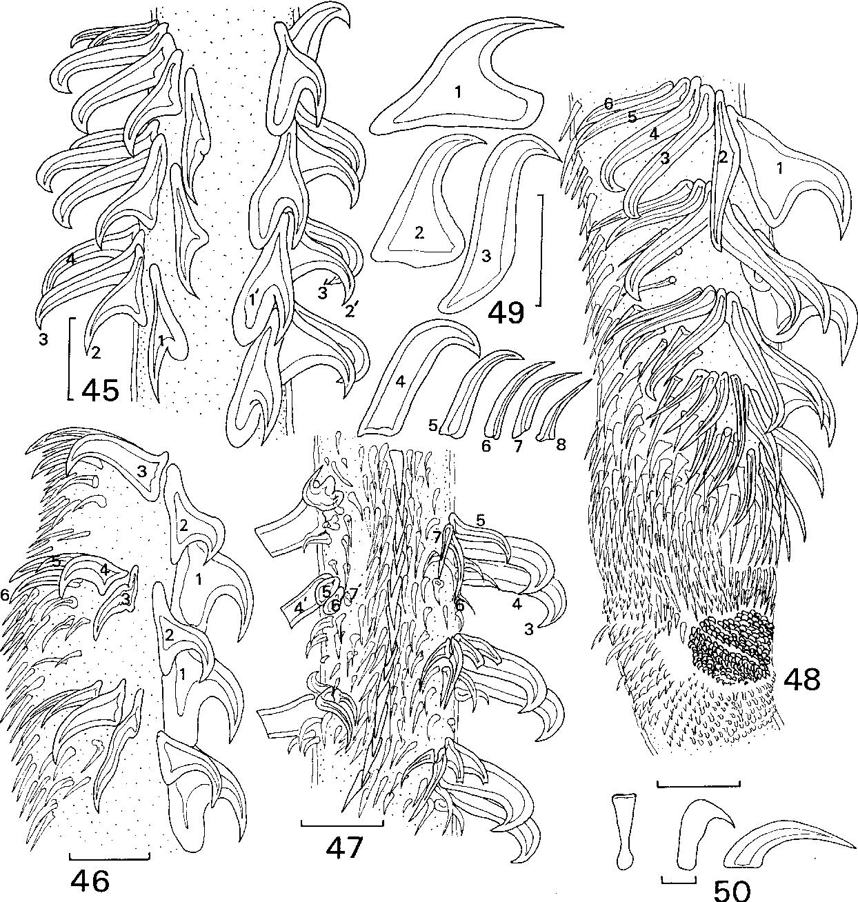 figure 45–50