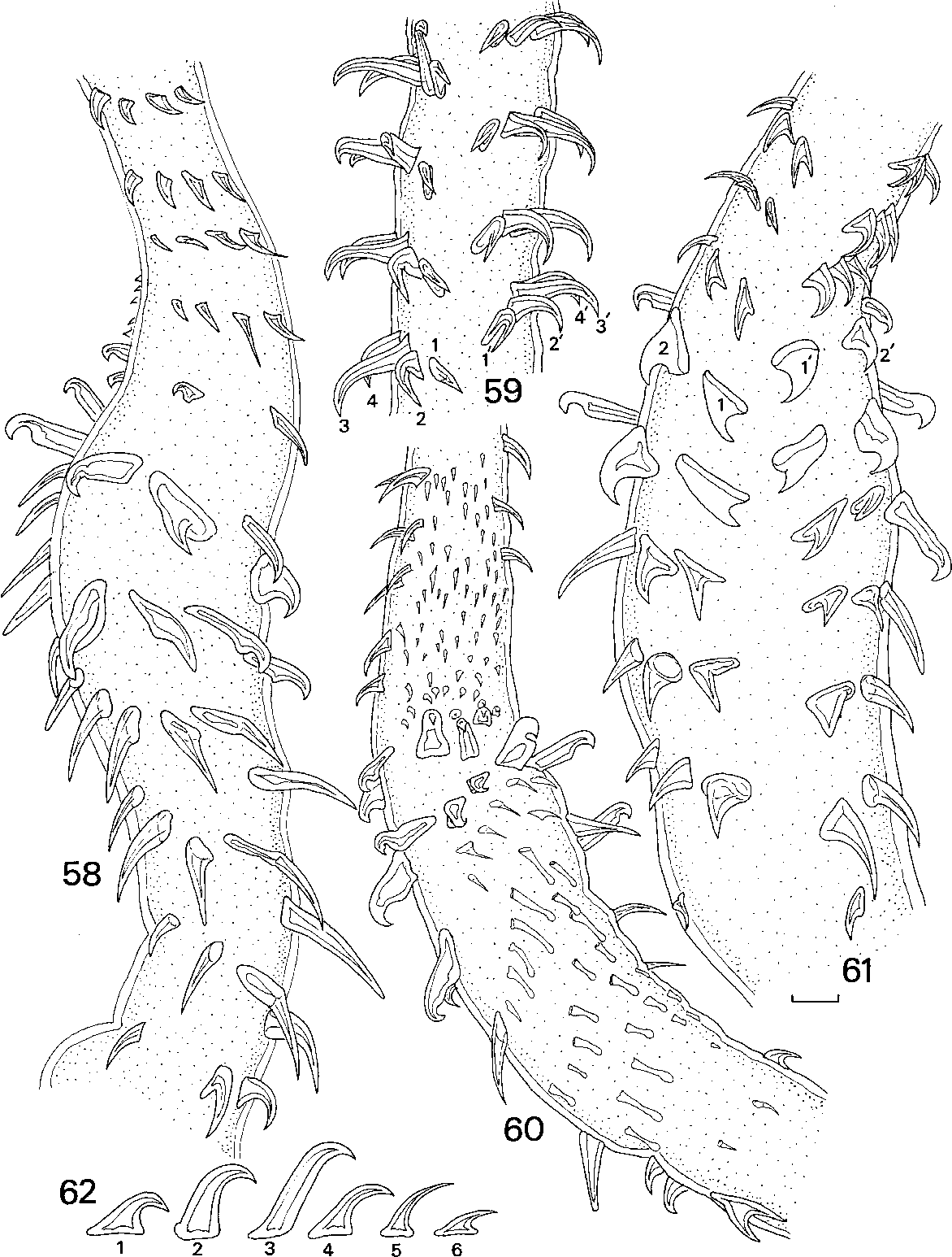 figure 58–62