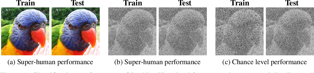 Figure 1 for Generalisation in humans and deep neural networks