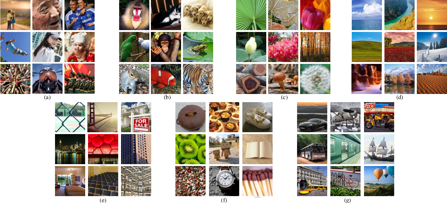 Figure 3 for dipIQ: Blind Image Quality Assessment by Learning-to-Rank Discriminable Image Pairs