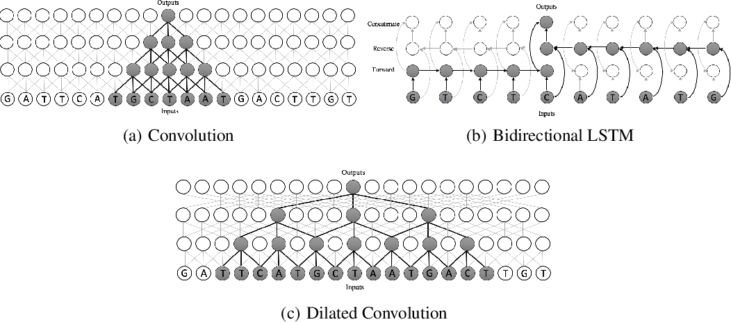 Figure 1 for Dilated Convolutions for Modeling Long-Distance Genomic Dependencies