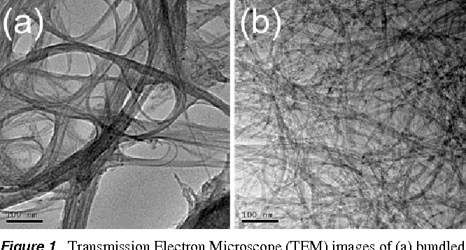 Figure 1. Transmission Electron Microscope (TEM) images of (a) bundled SWNTs before hydrogenation and (b) debundled H-SWNTs after polyamine hydrogenation.