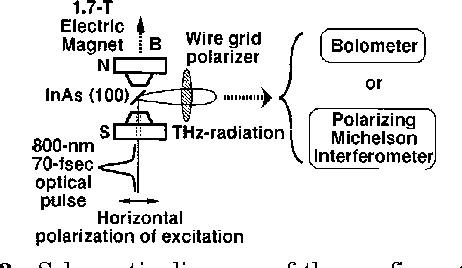 Exploring dynamics in the far-infrared with terahertz spectroscopy