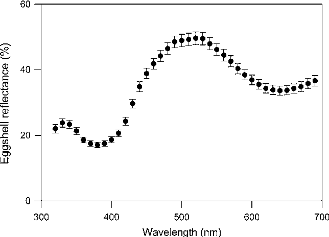 Fig. 1 Mean spectral reflectance of southern rockhopper penguin eggs (displayed is the average per clutch). Reflectance spectra were averaged at 10-nm intervals. Vertical bars denote ±95 % confidence intervals. Sample sizes were N = 85 clutches