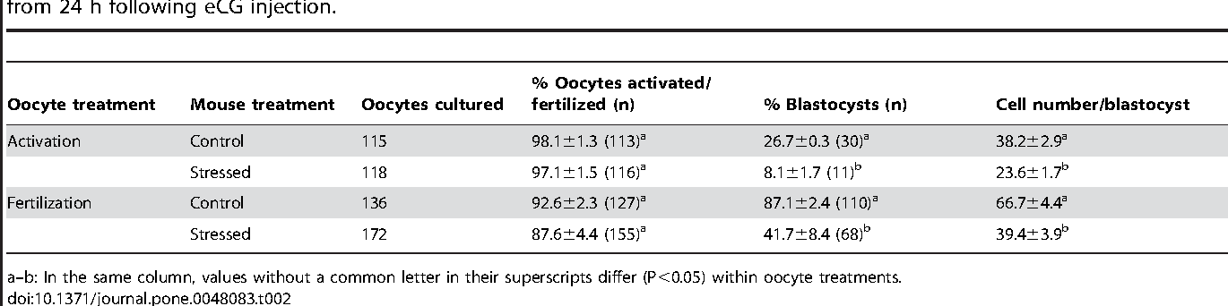 Table 2. Oocyte activation or fertilization and embryo development in vitro after mice were exposed to cat stress for 24 h starting from 24 h following eCG injection.