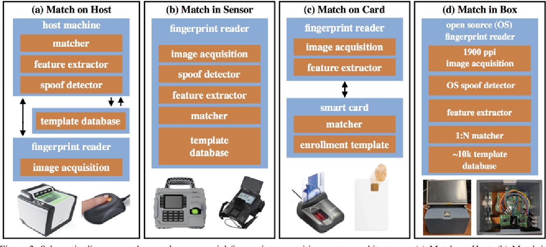 Figure 3 for Fingerprint Match in Box