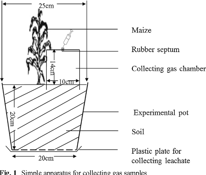 Rice Husk Biochar And Crop Residue Amendment In Subtropical Cropping