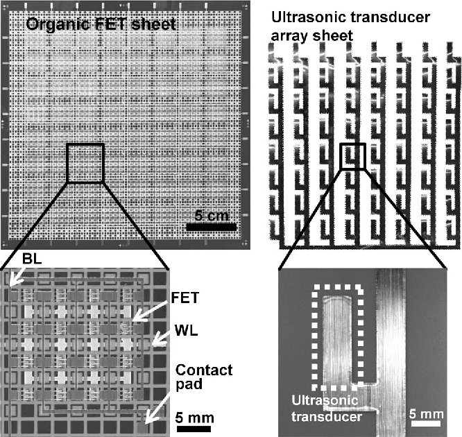 Figure 3 from Large-Area Flexible Ultrasonic Imaging System