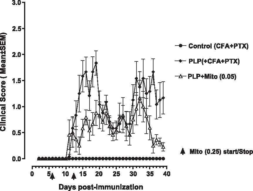 Fig. 3. Effect of mitoxantrone (0.25 mg/kg, ip once daily between days 6 and 12) on clinical evolution of EAE.