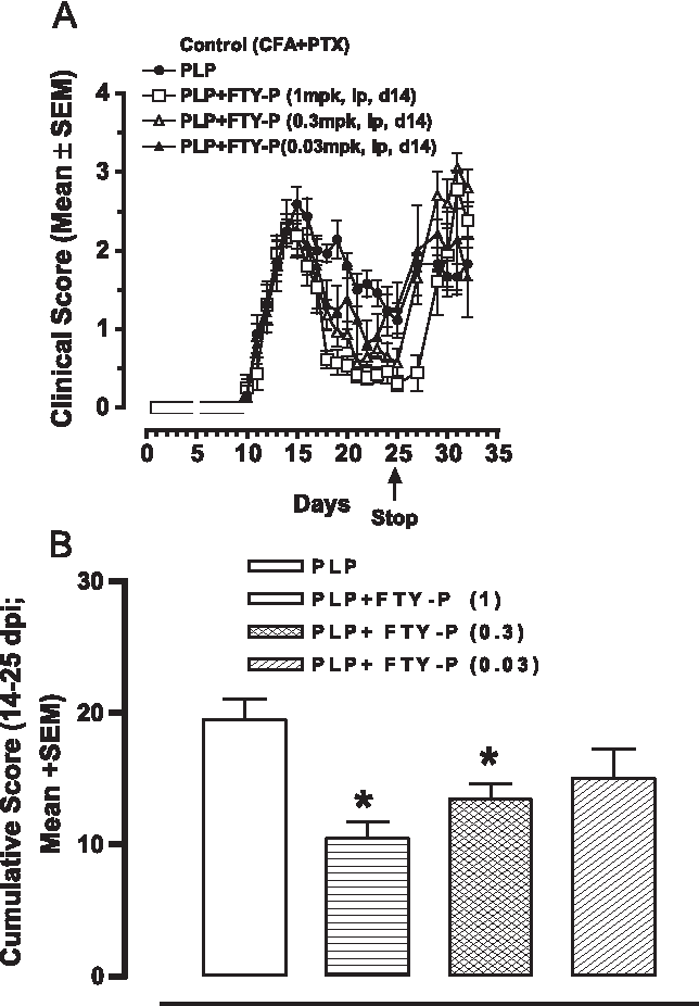 Fig. 5. Effect of FTY-phosphate on clinical state of mice induced for EAE. (A) Time course of EAE. FTY-P was given daily by ip injection between days 14 and 25 at 0.03, 0.3, or 1 mg/kg. (B) Cumulative clinical scores between days 15 and 25 for mice treated daily with 0.03, 0.3, or 1 mg/kg FTY-P between days 14 and 25.