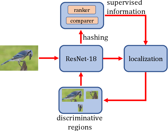 Figure 4 for Simultaneous Region Localization and Hash Coding for Fine-grained Image Retrieval