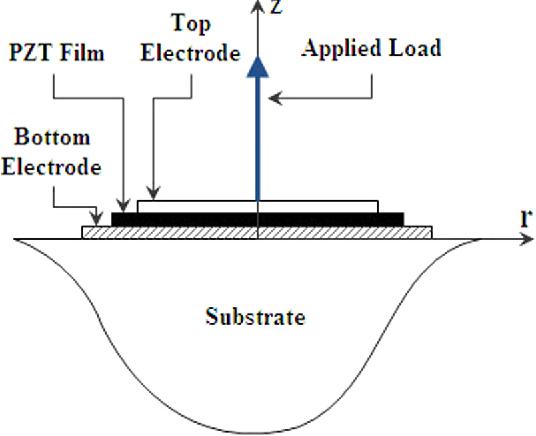 measurements of piezoelectric coefficient d33 of lead
