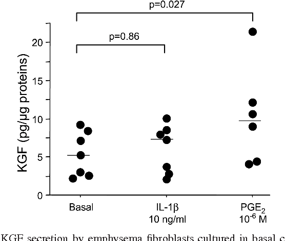 Fig. 6. KGF secretion by emphysema fibroblasts cultured in basal condition (n 7) or exposed to 10 ng/ml IL-1 (n 7) or 10 6 M PGE2 (n 6). Individual values and median (bar) are given.