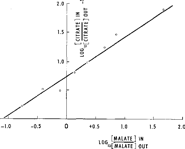 TABLE I Variation of citrate distribution at equilibrium with calculated malate gradient