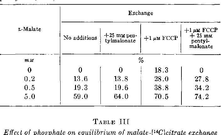 TABLE II Effect of FCCP on equilibrium of malate-[W]citrate exchange Incubations were carried out as described for Fig. 1 with FCCP, pentylmalonate, and L-malate at the concentrations shown.