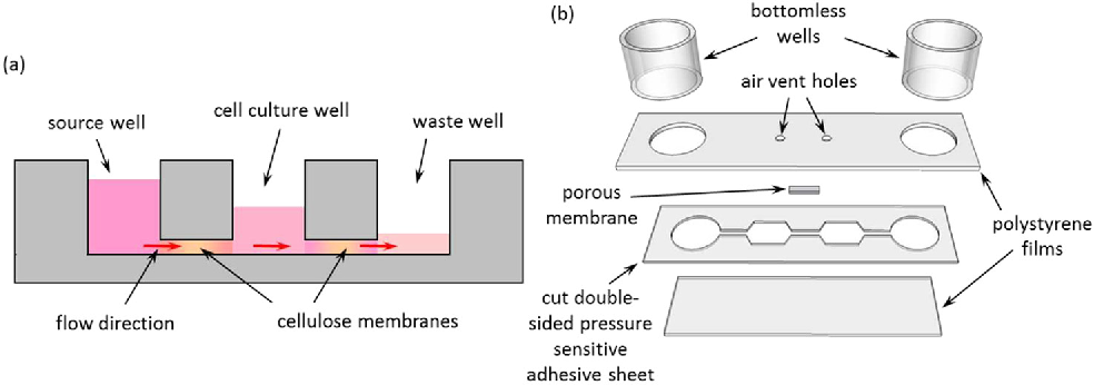 Figure 1 from A pump-free membrane-controlled perfusion microfluidic ...